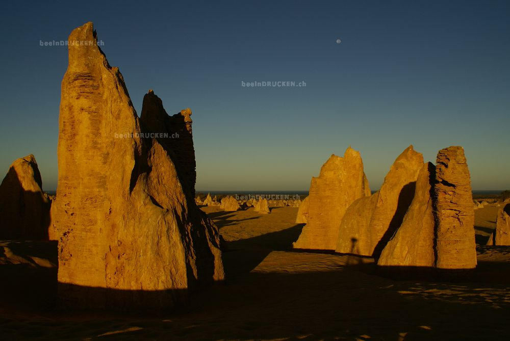 Sonnenaufgang Pinnacles, Westaustralien