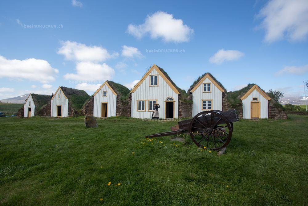 Grassodenhaus