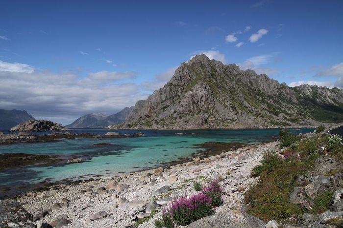 Inlet Lofoten