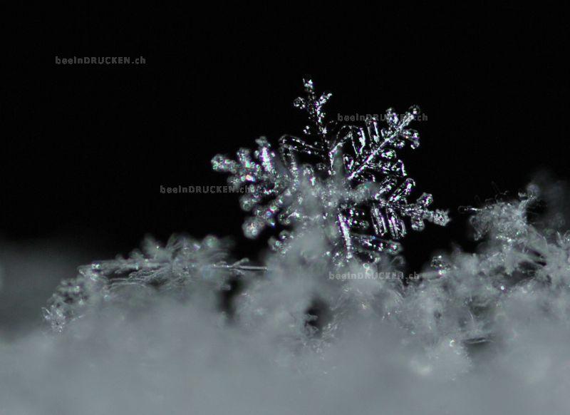Eiskristall2