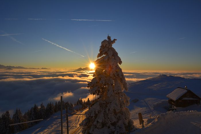 Rigi im Winter