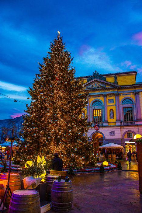 Weihnachtsbaum Lugano (2017)